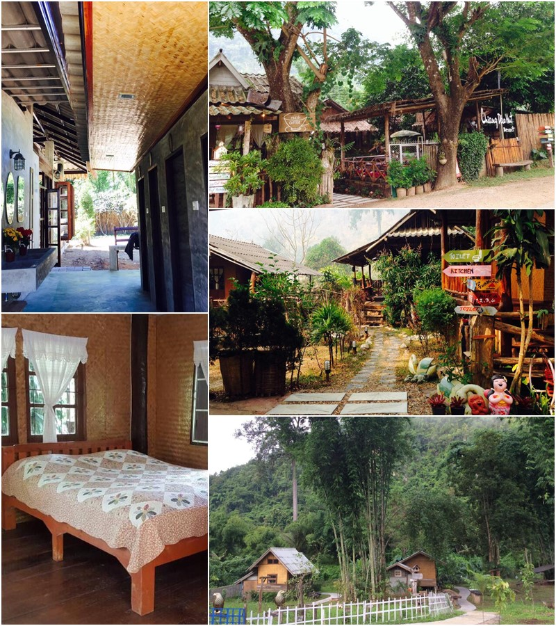 เชียงดาว ฮัท (Chiang Dao Hut)