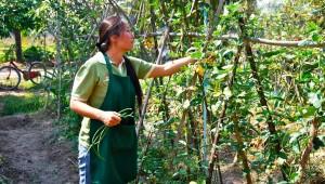 Chiang Mai Thai Farm Cooking School Local Tour