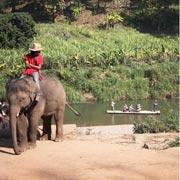 Chiang Mai Elephant Safari Tour Bamboo Rafting