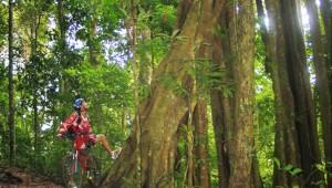 Chiang Mai Mountain Biking Hike and Bike Adventure