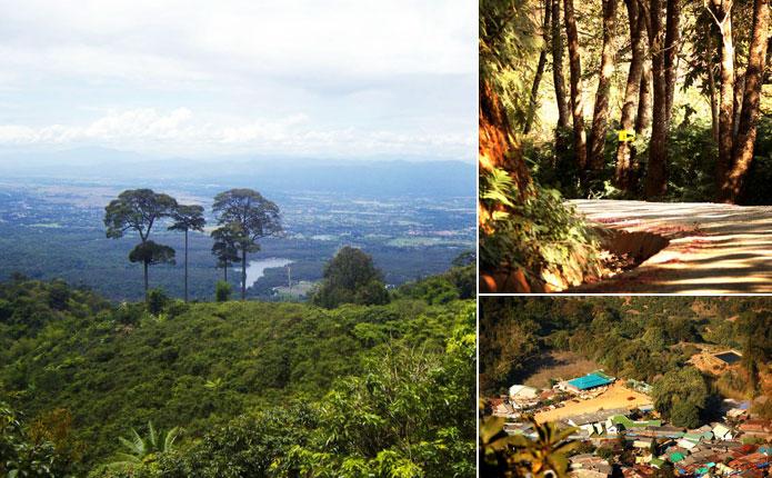 Chiang Mai Mountain Biking Adventure View