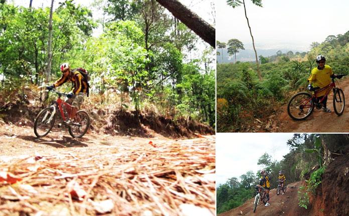Chiang Mai Mountain Biking Adventure