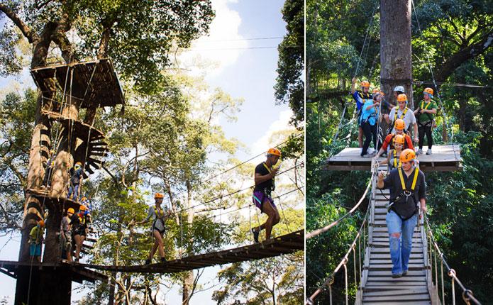 Jungle Flight Canopy Walk Chiang Mai