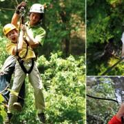 Jungle Flight Treetop Chiang Mai