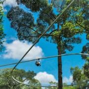 jungle-flight-zipline-chiang-mai-02