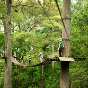 Jungle Flight Zipline Rain Forest Chiang Mai