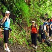 Chiang Mai Trekking Adventure