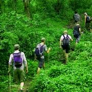 Chiang Mai Trekking Adventure Tour
