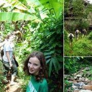 Chiang Mai Trekking Adventure Rainforest