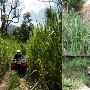 atv-chiangmai-adventure-tour