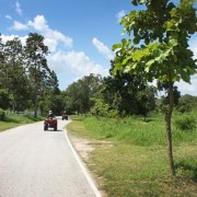 atv-tour-chiangmai